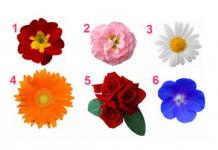 აირჩიეთ ყვავილი და ჩვენ გაგიმხელთ თქვენი ქალურობის საიდუმლოს.