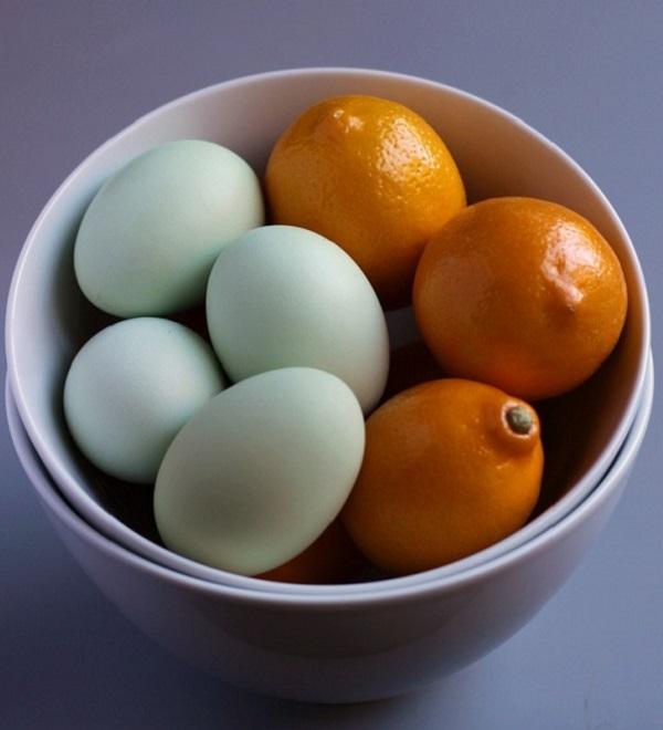 კვერცხი და ლიმონი