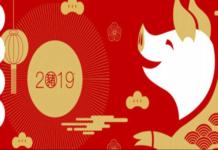 2019 წლის ჩინური ზოდიაქო: რა მოგიმზადათ ღორის წელმა